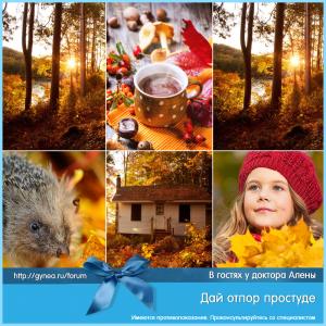 prostuda_viferon_5_15092015